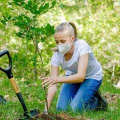 Nachdem ihre Schwester schon eines der zarten Bäumchen pflanzen durfte, ist nun Prinzessin Leonoran der Reihe. Behutsam setzt sie den zarten Baum in die Erde.