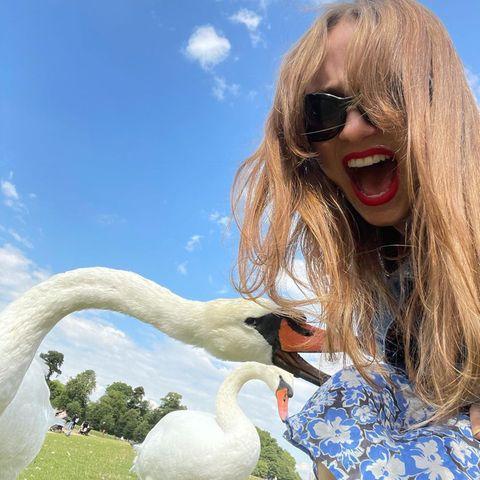 Wilde Tiere: Maude Apatow Schwanattacke
