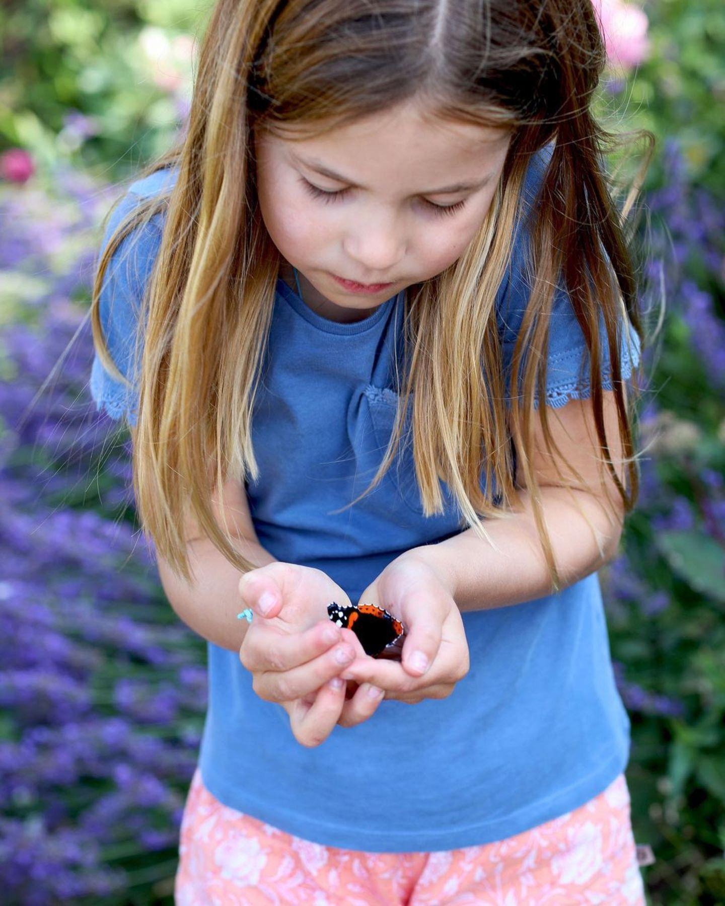 """Prinzessin Charlotte ist jetzt schon eine eifrige Naturschützerin: Anlässlich der """"ButterflyCount""""-Initiative posten Herzogin Kate und Prinz William dieses bezaubernde Bild ihrer Tochter, die ganz behutsam einen Schmetterling, genauer gesagt einen Admiral, in den Händen hält. Was für ein schöner Fotomoment!"""