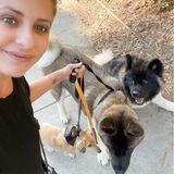 Sarah Michelle Gellar mit ihren Hunden