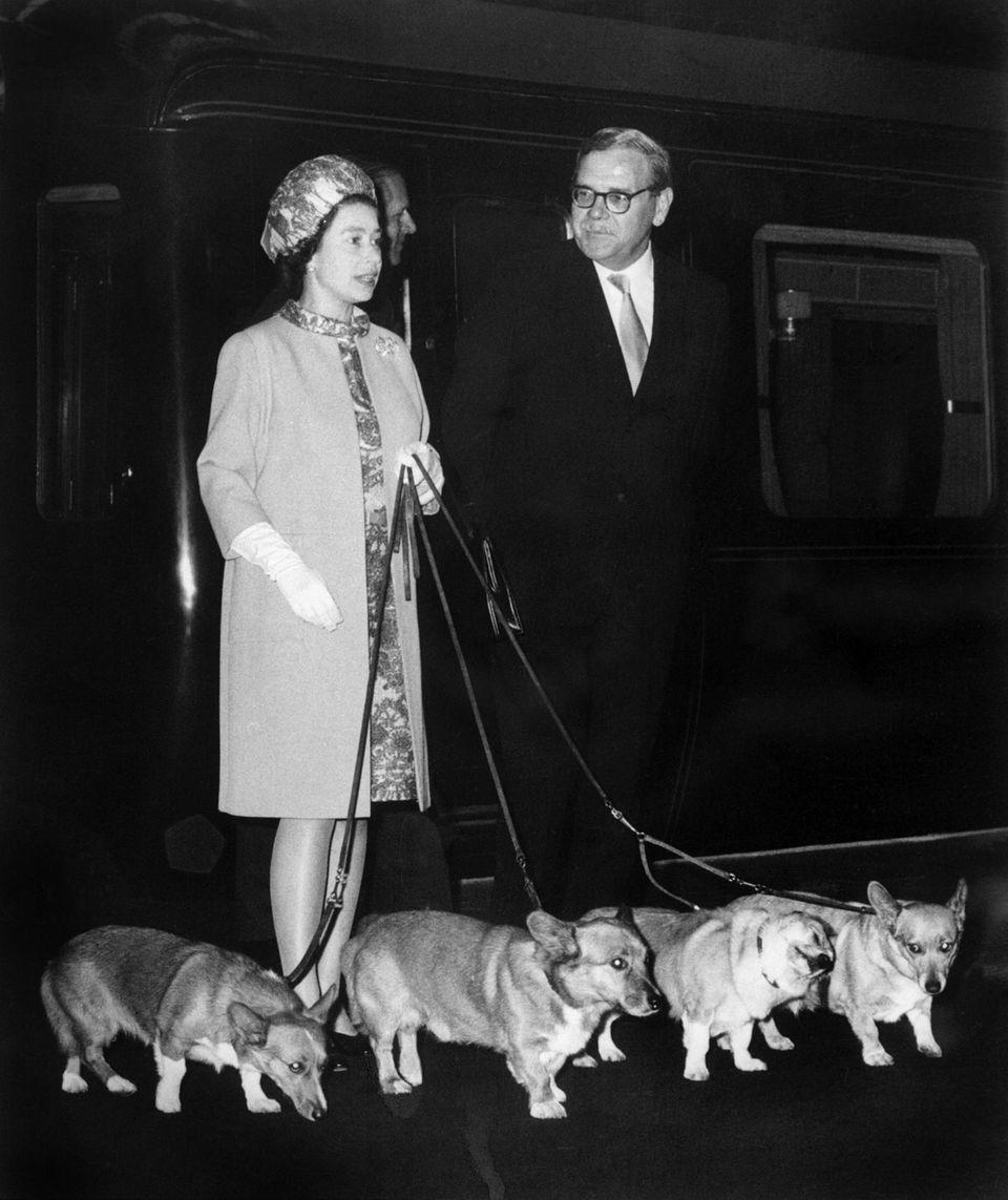 Queen Elizabeth steht am 15. Oktober 1969 am Bahnhof Kings Cross zusammen mit ihren vier Corgis.