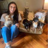 Hollywuff: Demi Moore mit ihren sieben Hunden