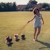 Victoria Beckham vor einer Hundeschau