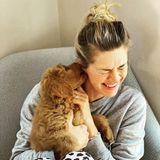 Hollywuff: Nina Bott mit Hund