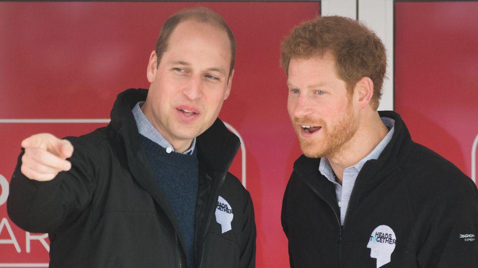 Prinz William + Prinz Harry: Für BBC-Dokumentation arbeiten sie zusammen