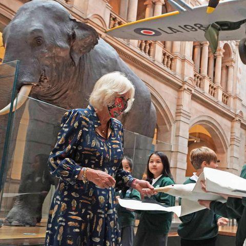 Windsor RTK: Herzogin Camilla mit Schülern im schottischen Museum