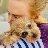Hollywuff: Nicole Kidman mit Hund