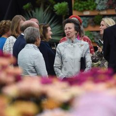 Windsor RTK: Prinzessin Anne bei der Flower Show in London