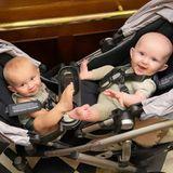 Familie Baldwin: Babys im Kinderwagen