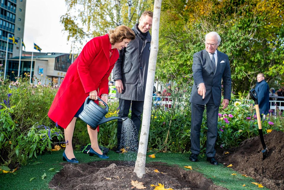 Royaler Terminkalender: Königin Silvia von Schweden gießt einen Baum, während König Carl Gustaf daneben steht