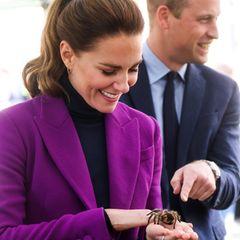 Royals und ihre tierischen Begleiter: Herzogin Catherine hat eine Spinne auf der Hand, Prinz William ekelt sich