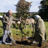 Prinz Charles und Queen Elizabeth pflanzen einen Baum