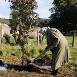 Queen Elizabeth pflanzt einen Baum