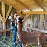 Wilde Tiere: Andrea Berg mit ihren Alpakas