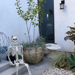 Wie so viele Stars macht auch Ashley Tisdale ihrHaus im Oktober Halloween-schick. Am Eingang begrüßtein lachendes Skelett die Hausbewohner.