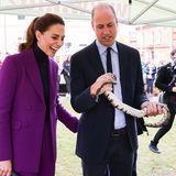29. September 2021  Überhaupt keine Angst vor Schlangen haben Herzogin Catherine und Prinz William bei einem Besuch in Irland. Die beiden besuchen dort dieUlster Universität in Londonderry.