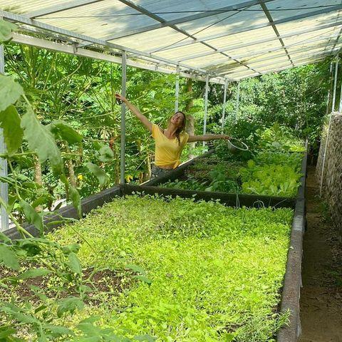 Gisele Bündchen zeigt ihren Garten.