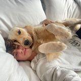 Hollywuff: Kuschel-Alarm bei Shawn Mendes und Hund Tarzan