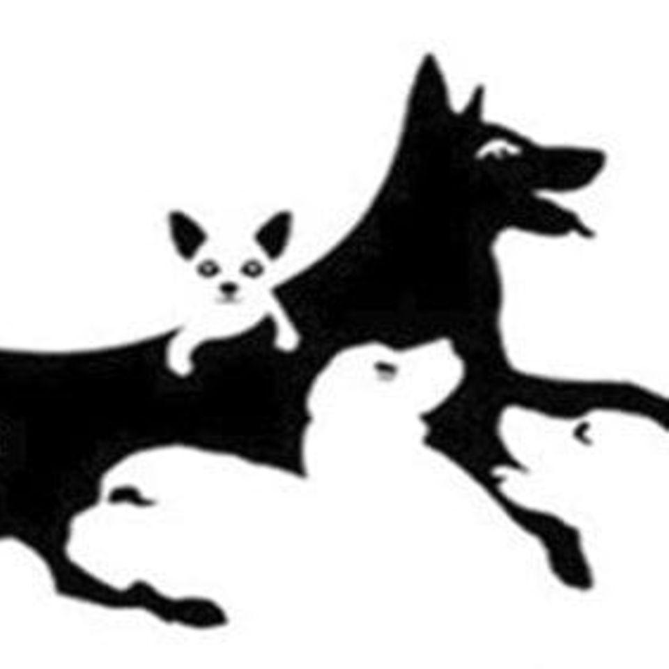 Hunde-Suchbild