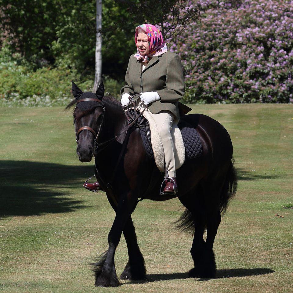 Queen Elizabeth bei einem Ausrittauf ihrem Pony Balmoral Fern im Mai 2020 in Windsor